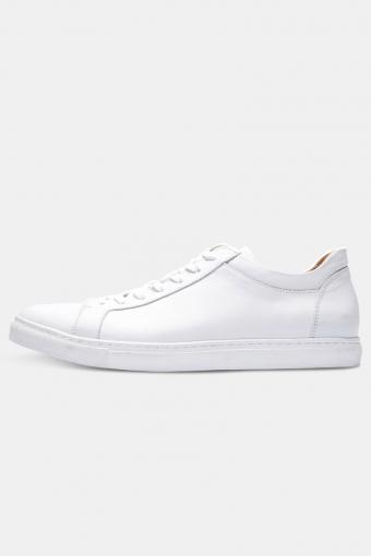 ShnDavid Sneakers Noos White